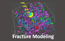 DFN model around wellbore